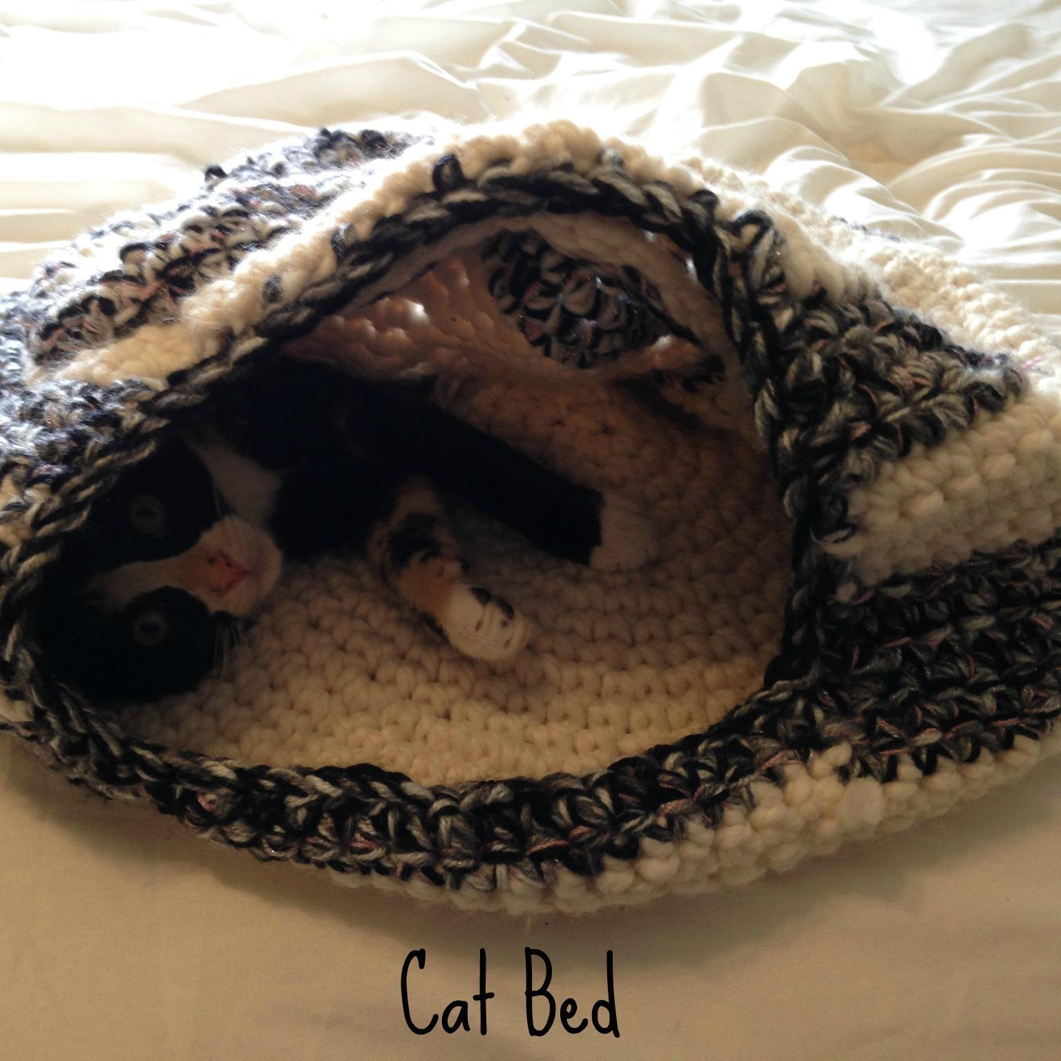 cat bed label