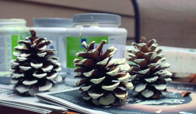 dry pinecones.JPG