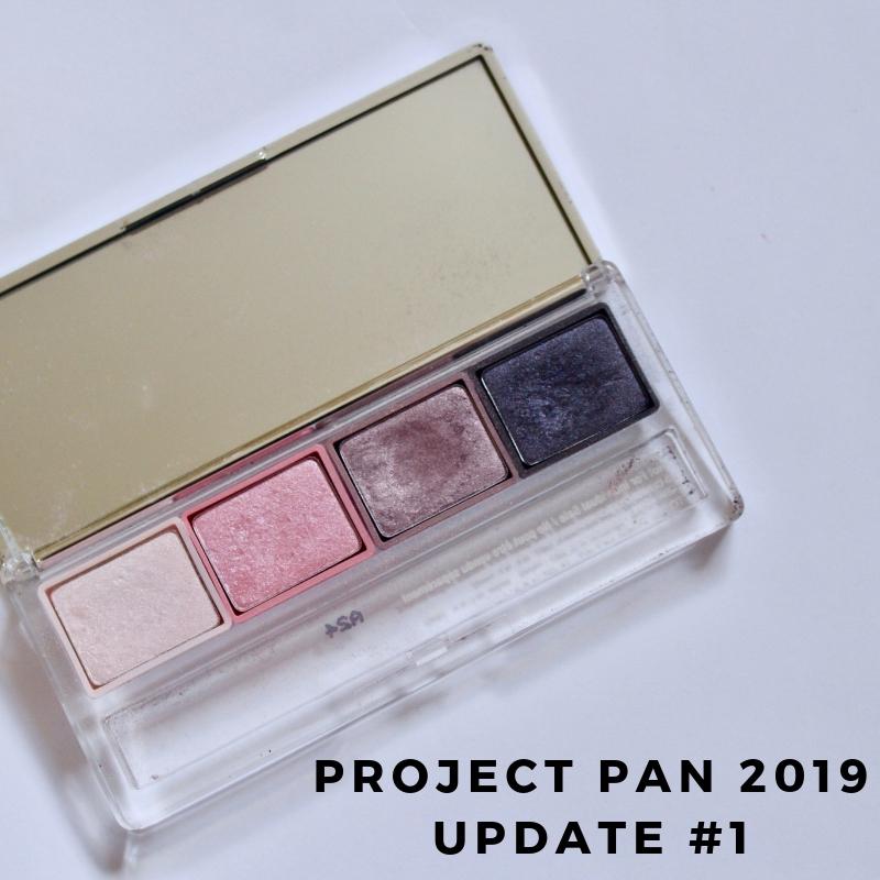 Project Pan 2019 Update #1.jpg