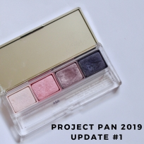 Project Pan 2019 Update #1.jpg